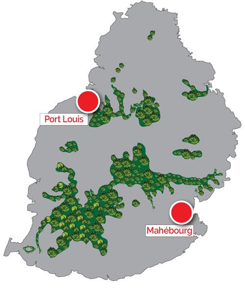 Un quart du pays recouvert de forêts